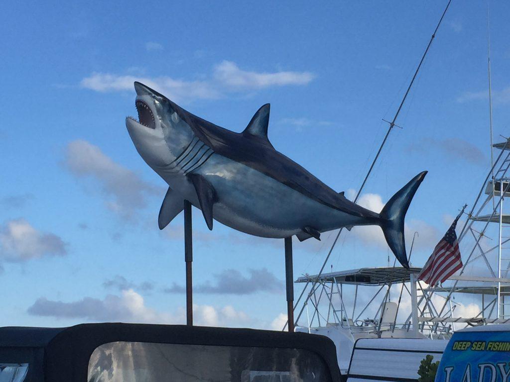 Deep Sea Fishing – Miami Beach Vacation Home